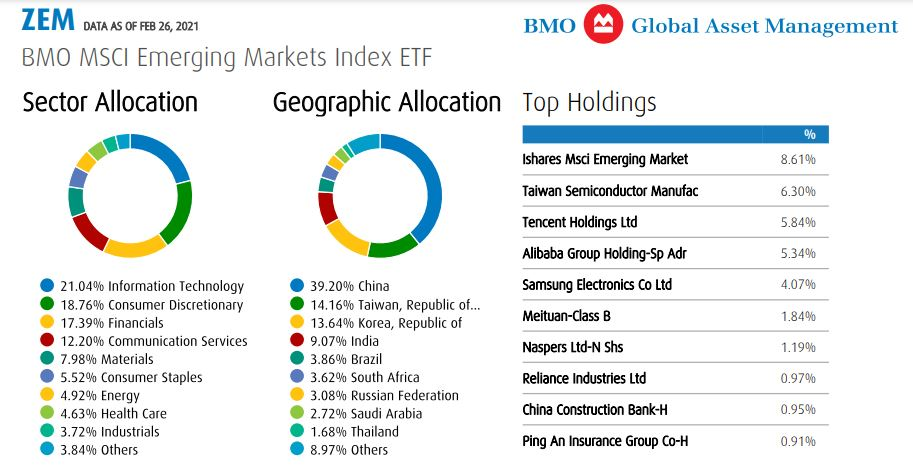 ZEM Allocation and Top Holdings